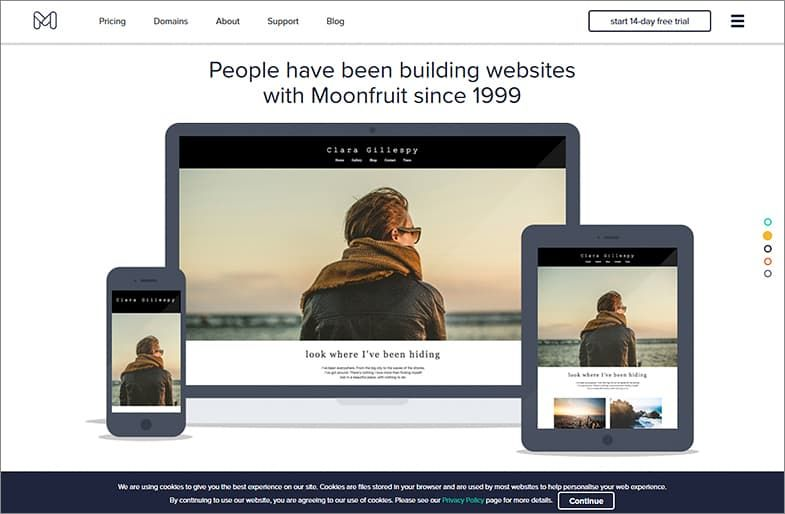 Moonfruit website builders